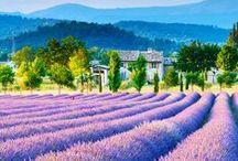 Beautiful France / Il y aurait autours de 45 000 châteaux en France.