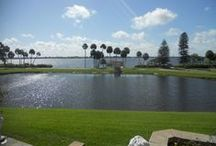 FOR RENT-61 Island Ct / Currently listed - Terra Ceia, FL