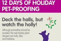 12 Days of Holiday Pet-Proofing