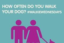 #WalkieWednesday - Tips for Walking with Your Dog / Love walking with your dog? Check out these tips for dog walking. #DogWalker
