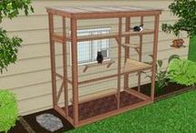 Outdoor Cat Condos / Keep your indoor cat safe & happy with these purrfect outdoor cat enclosures! Pounce through some great DIY ideas & inspirations for your next pet project.