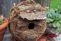 Budky, krmítka a hnízda