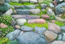nasze ogrody / wykonane  przez nas