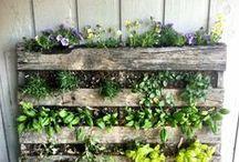 pallet.garden