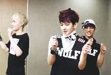 엑소 Exo / Exo-K (Suho, Baekhyun, Chanyeol, D.O., Kai, Sehun); Exo-M (Xiumi, Lay, Chen); Kris, Luhan, Tao