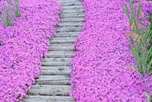 Great Garden Art