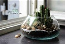 Do It Yourself // DIY