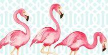 * Flamingo *