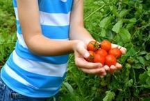 Grow a Garden / #Growing a #garden to stay #active and #teach your #children about nutrition.