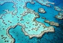 Great Barrier Reef / There are certain places in the world that take your breath away. Where you step back and simply smile in wonder. The Great Barrier Reef is one of those places.  Find out more about visiting the Great Barrier Reef here: http://j.mp/JKXMhF