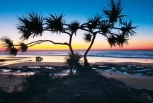 The Sunrise State / Showcasing the beautiful sunrise and sunsets from across the sunshine state. / by Queensland