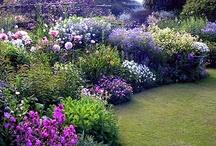 Garden Glory
