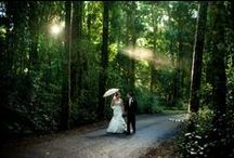 Weddings / Queensland is bursting with wedding inspiration from destinations, catering and outfit options. Plan your dream wedding today in the picturesque setting of Queensland.