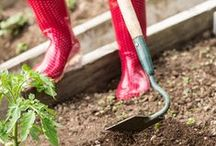 Gardening for Health / National Gardening Exercise Day is June 6th every year, but you can garden for your health everyday.  These are great ways to incorporate your workout with your gardening tasks.