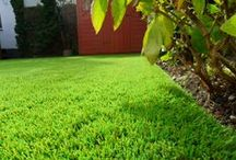 10% DISCOUNT OFF ALL INSTALLATIONS / We are offering 10 pct discount off all installs of our famous artificial grass booked in for November 2014. We cover London, Essex, Kent, Surrey, Hertfordshire, Hampshire and all surrounding areas.  www.perfectgrassltd.co.uk/areas-covered