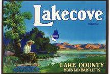 Vintage Lake County California
