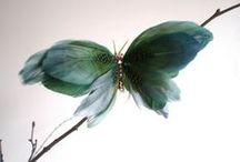 mariposas plumas, butherflay feathers