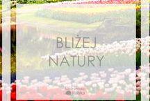 Wymarzony ogród / Jak urządzić ogród? Tutaj znajdziesz pomysły nie tylko na wielkie ogrody, ale także na małe ogródeczki na balkonie czy... w mieszkaniu! Bądź zawsze bliżej natury <3