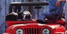 Egonoticias Jeep