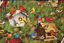 Bind Bind Birdy / Enjoy these quality bird fabrics that you can get at Friendship Star Quilt Shop!