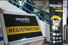 Animex International / Based on Animex UK, one of the premier animation and games festivals in the world Animex International is branching out. For further info email : teessideuniscm@tees.ac.uk