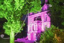 Mariage C & G / Thème: Alice in Wonderland  Décor réalisé par : Nuits Célestes Mariage Wedding Planner & Décorateur Paris, Bordeaux et Périgueux #decoration #alice #wonderland #weddingplanner #nuitscelestes #bordeaux #paris #perigueux #mariage #wedding #createurdefeerie #inspiration #paysdesmerveilles #chateau #miseenlumiere #illumination