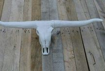 L'inusité Hugo 2.0 / Crânes d'animeaux à cornes décoratifs