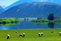 My beautiful country, New Zealand. Home.
