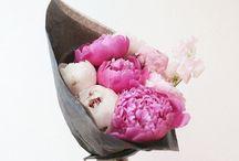 herbal. floral.