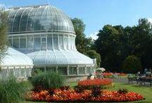 Conservatories, Solariums & Atriums