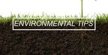 Environmental Tips / We show you ways to be your best environmental self by minimising waste and recyling what you can!