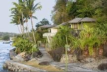 St. Vincent & The Grenadines - Destination Wedding Venues