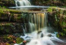 Beautiful Scenery / by Kelly SweetPea