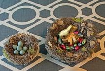 Easter Decor Ideas / Get your apartment Easter ready with these decoration ideas and tips!