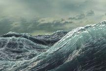 FOTOS Maritim & Meeresbriese / Bewegte Fotos vom Meer und Sonstigem was dazugehört. Eine frische Brise und Meerestiere. Aber vor allem interessiert mich dabei das ständige Wechselspiel von Ruhe und Bewegung von Nah und Ferne, von fester und beweglicher Materie.