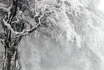 KALTE WINTERZEIT / Draußen Schneefocken und eisige Kälte. Drinnen kuschelige Wärme bei heißem Tee oder Glühwein. Und natürlich darf Weihnachten und das Strickwerkzeug nicht fehlen.