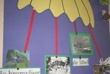 school: taal (woordenschat)
