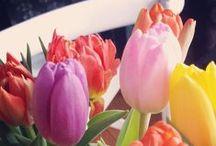 Easter&Spring