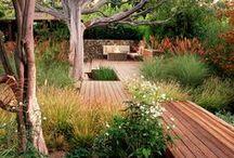 / GARDEN / / Landscaping + Activities for the Garden.
