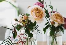 FLORA + FAUNA / gardens. floral arrangements, anything pretty in nature