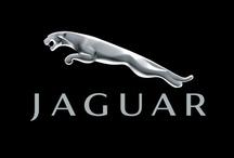 • Jaguar