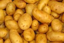 FOOD • Potatoes