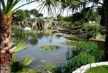 Oasis in Egypt (www.vantage-travels.com) /  (Bahariyah - Siwa - Farafra - Dakhla - Kharga)