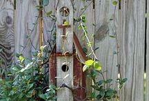 Birdhous
