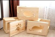 Woodwork / My hobby and passion. All of my pets.