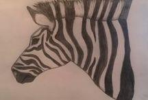 Drawing ~ Animals