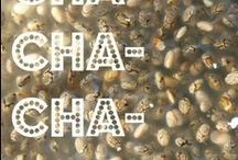 Chia/ Рецепти с Чиа семена