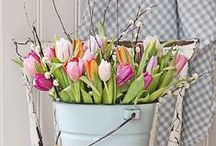 Spring Sensation / The bright, pretty colours of spring can inspire in many ways!