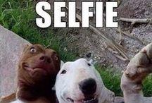 Best selfies