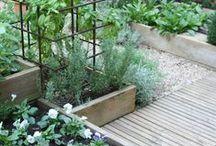 Garden:Other